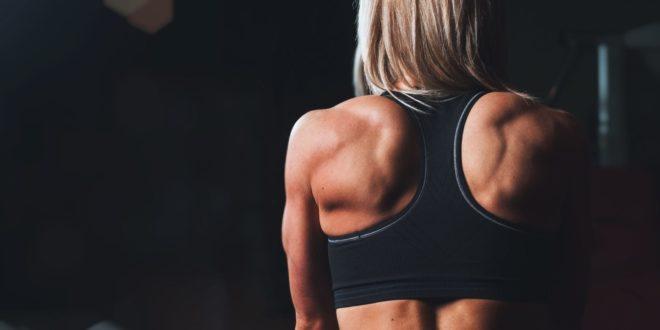 Ich möchte muskulöser aussehen. Was ist der beste Weg, um Gewinne zu erzielen?