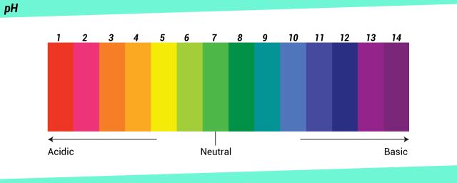 pH-Skala von sauer über neutral bis basisch