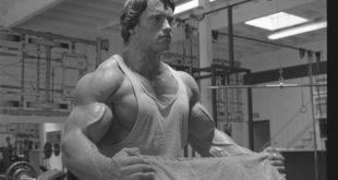 Helfen Sie beim Muskelaufbau, indem Sie einige Mythen entlarven