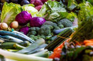 Warum ist eine gute Ernährung und körperliche Fitness für eine gute Gesundheit von entscheidender Bedeutung?