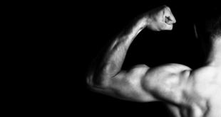 Was Ihnen niemand über Muskelwachstum erzählt