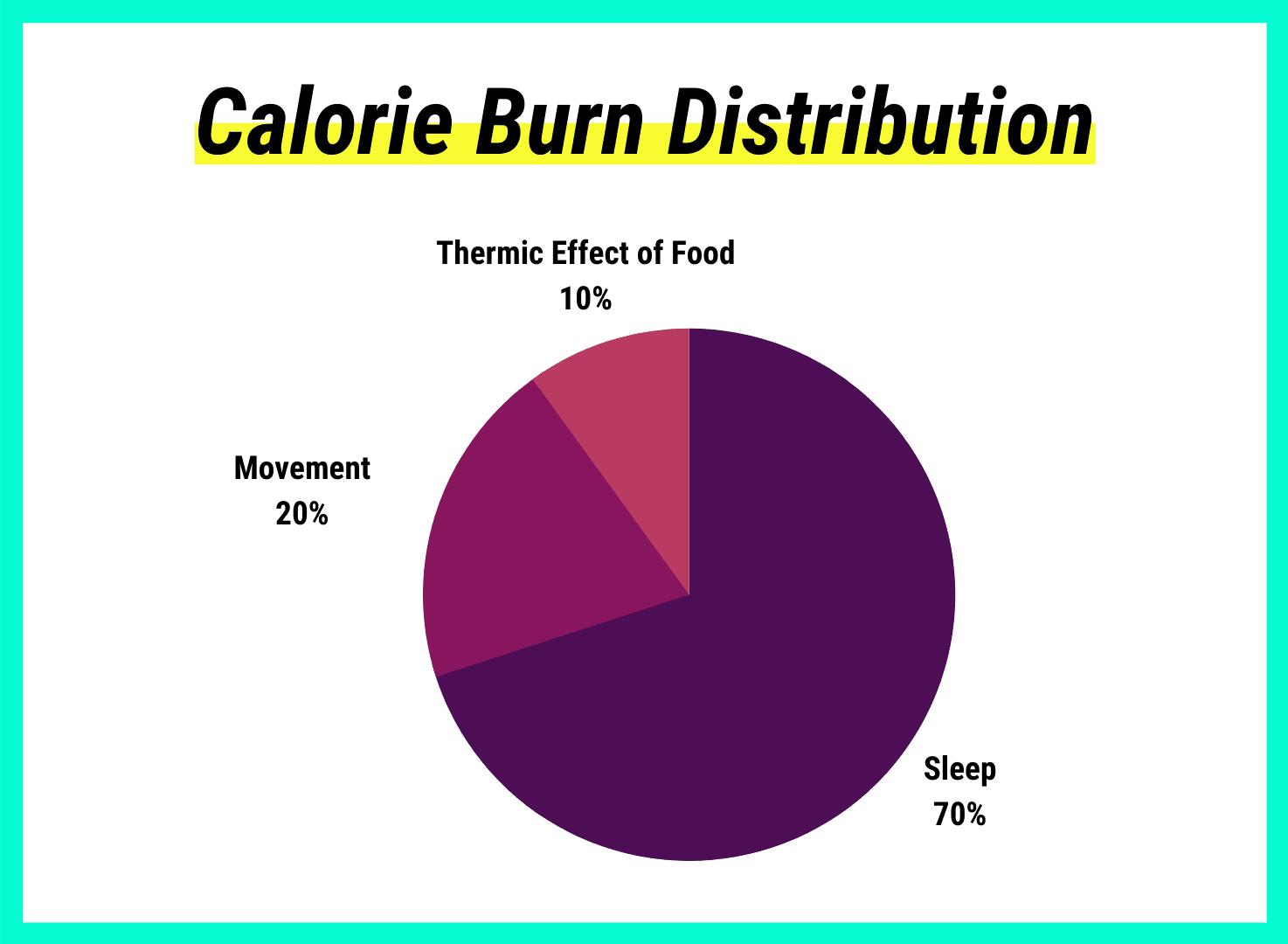 Kreisdiagramm zur Verteilung der Kalorienverbrennung