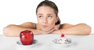 Die Hierarchie der Ernährung