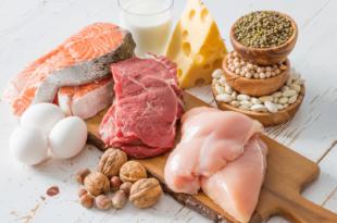 Das Kaninchenloch: Wie viel Protein pro Mahlzeit?